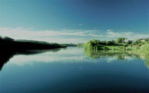 Доклад Обитатели водоемов
