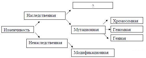 https://bio-ege.sdamgia.ru/get_file?id=25058