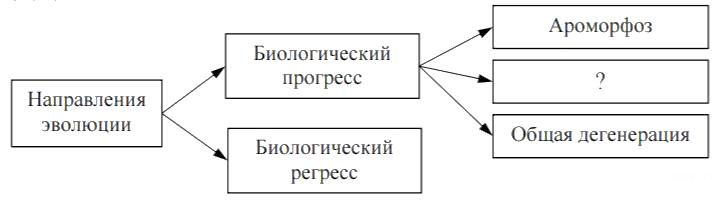 https://bio-ege.sdamgia.ru/get_file?id=28357