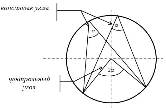 центральный и вписанный углы