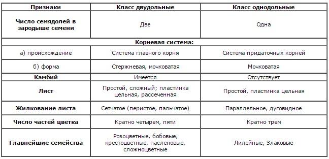 сравнение классов однодольные и двудольные