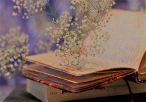 драгоценные книги