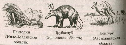 https://bio-ege.sdamgia.ru/get_file?id=28969