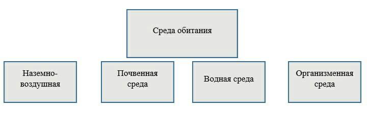 https://pp.userapi.com/c847122/v847122887/17839a/ndldpUCRthw.jpg