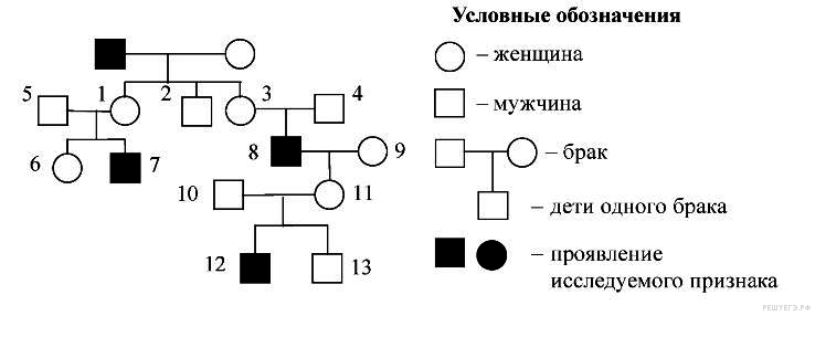 https://bio-ege.sdamgia.ru/get_file?id=8407