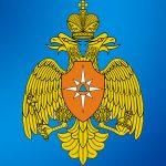 Большая эмблема МЧС России