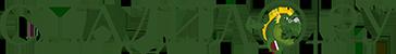 СПАДИЛО.РУ Logo